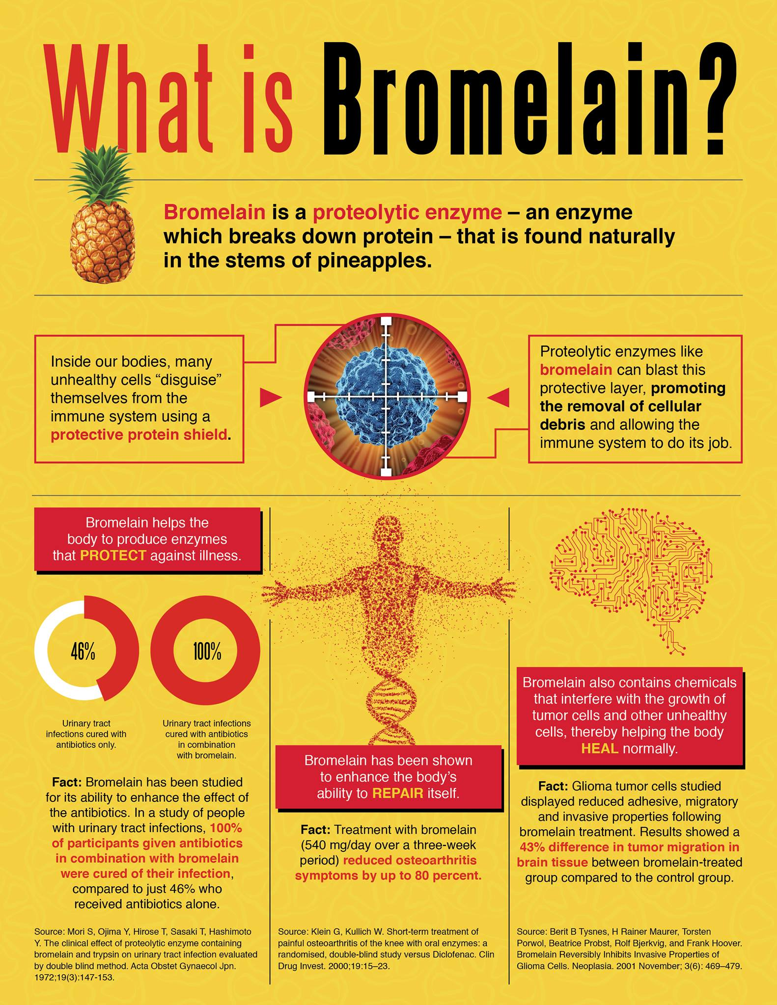 What-is-Bromelain